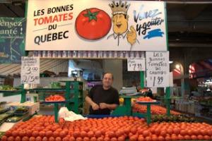 tomatos Montreal